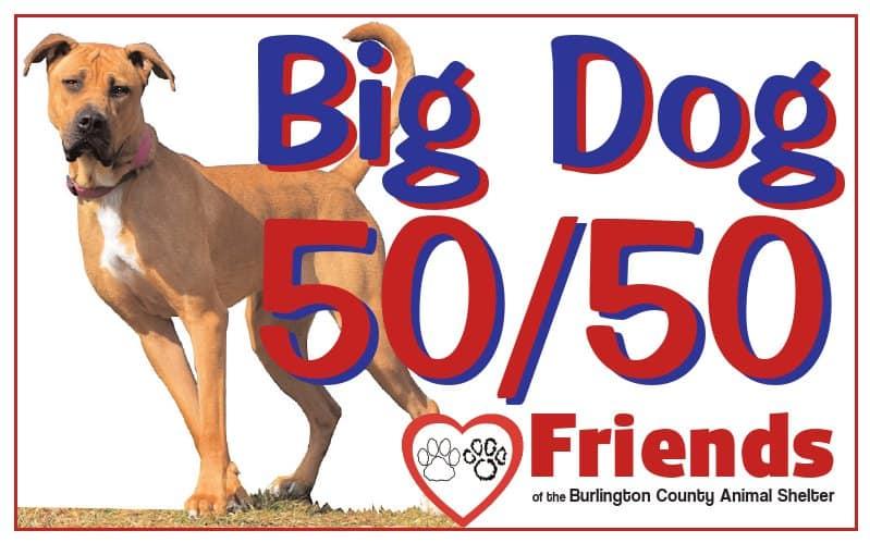 Big Dog 50 50 Logo